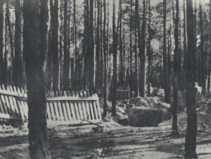 Zbrodnia w Lasach Chojnowskich