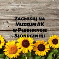 Zdobądźmy wspólnie Słonecznika!